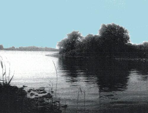 """""""Elbvertiefung. Ein Fluss ruft zur Besinnung""""Lesung: Dieter Siegel"""